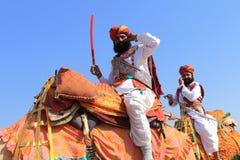 Traditioneel geklede Rajastani-mensen op kamelen Royalty-vrije Stock Fotografie