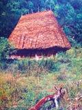 Traditioneel huis Royalty-vrije Stock Afbeelding