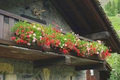 Traditioneel huis, Italië Royalty-vrije Stock Foto's