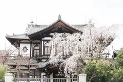 Traditioneel huis in Nara Japan stock afbeeldingen