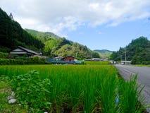Traditioneel Japans plattelandsdorp dat op het Nakatosa-gebied op Shikoku-Eiland wordt gevestigd royalty-vrije stock fotografie