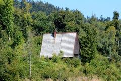 Traditioneel klein houten berghuis met pointy die dak volledig met dichte bomen en andere bosvegetatie wordt omringd royalty-vrije stock afbeelding