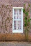 Traditioneel venster Stock Afbeeldingen