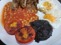 Traditioneel volledig Engels heet en vers gekookt ontbijt Royalty-vrije Stock Foto's