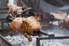 Traditioneel zogend varken op een roterend spit stock afbeeldingen