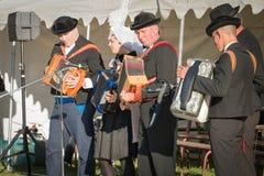 Traditionele accordeonist van ten westen van Frankrijk stock afbeelding