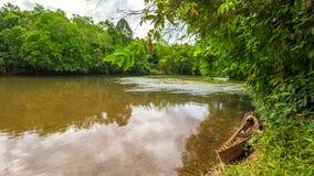 Traditionele boot op de rivier Indonesië in wildernissen royalty-vrije stock foto