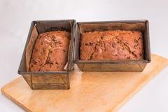 2 traditionele Britse fruitbroden in gebakken bakvormen, Stock Afbeelding