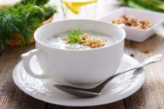 Traditionele Bulgaarse de zomer koude soep met komkommers en okkernoten stock afbeelding