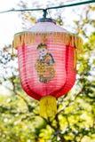 Traditionele Chinese lantaarn stock fotografie