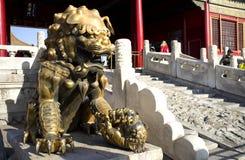 Traditionele Chinese Poortleeuw Royalty-vrije Stock Fotografie