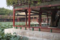 Traditionele Chinese tuin Royalty-vrije Stock Foto's