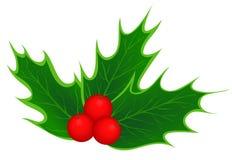 Traditionele de hulstbladeren van Kerstmis Royalty-vrije Stock Foto's