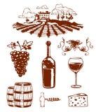 Traditionele druivenkaslandbouwproductie met druivenpers en rode wijn van de de pictogrammeninzameling van de flessenlijn de aard Royalty-vrije Stock Afbeeldingen