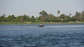 Traditionele Egyptische bedouin visser op rivier door riet stock video