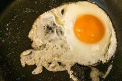 Traditionele gemakkelijke ontbijtmaaltijd gebraden die eieren op een pan worden gediend Royalty-vrije Stock Foto's