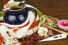 Traditionele geneeskunde tegen koude en griep Rozebottelthee Behandeling van de ziekte Stock Afbeelding