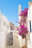 Traditionele Griekse architectuur op de eilanden van Cycladen Stock Foto's