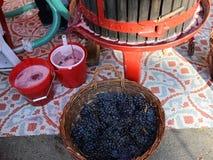 Traditionele houten wijnpers stock video