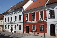 Traditionele huizen en straat in Hongarije Stock Afbeelding