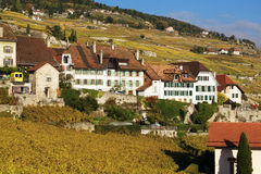 Traditionele Huizen in Lavaux, Zwitserland Royalty-vrije Stock Afbeelding