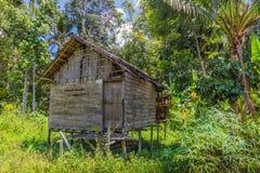 Traditionele huizen van de inheemse inwoners van Indonesië in dorp Stock Afbeeldingen