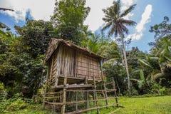 Traditionele huizen van de inheemse inwoners van Indonesië in dorp Stock Afbeelding