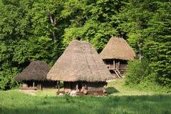 Traditionele huizenarchitectuur - Roemenië Royalty-vrije Stock Foto's