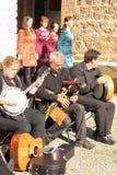 Traditionele Ierse muziek en dans stock fotografie