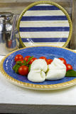 Traditionele Italiaanse mozarellabuffels met tomaten en basilicum a stock foto