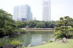 Traditionele Japanse tuin met bureaugebouwen Royalty-vrije Stock Foto