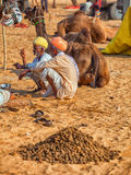 Traditionele Markt in Pushkar De kamelen voor verkoop leggen op het zand Stock Afbeeldingen