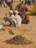 Traditionele Markt in Pushkar De kamelen voor verkoop leggen op het zand Stock Fotografie