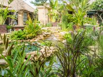 Traditionele met stro bedekte dakaanpassing en tuin in Bali stock foto's