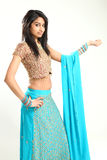 Traditionele Mooie Indische Vrouw stock fotografie
