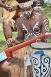 Traditionele Musicus van Papoea stock fotografie