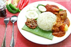 Traditionele Nasi Lemak Royalty-vrije Stock Foto