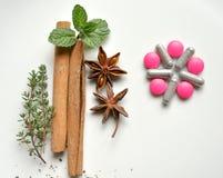 Traditionele, natuurlijke remedie tegenover moderne pillen Stock Foto's