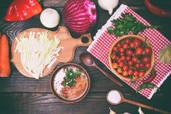 Traditionele Oekraïense borscht in een bruine kleischotel Royalty-vrije Stock Foto's