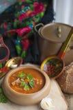 Traditionele Oekraïense rode soep van groenten en vlees Foto in een rustieke uitstekende stijl Plaats voor tekst De ruimte van he royalty-vrije stock fotografie