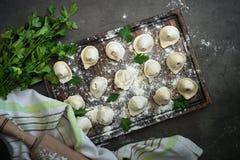 Traditionele pelmeni of bol bij scherpe raad Royalty-vrije Stock Foto's