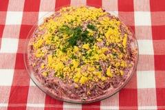 Traditionele Russische gelaagde die salade haringen onder een bontjas wordt genoemd stock afbeeldingen