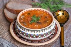 Traditionele Russische keuken - groentesoep met kool Stock Fotografie