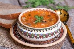 Traditionele Russische keuken - groentesoep met kool Royalty-vrije Stock Foto's