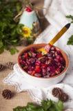 Traditionele Russische salade van groenten, in purpere salade De ruimte van het exemplaar royalty-vrije stock foto