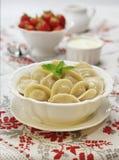 Traditionele Russische voedselpelmeni Royalty-vrije Stock Foto's