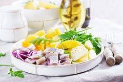 Traditionele salade van gezouten haringenfilet, verse appelen, rode ui en eieren stock foto