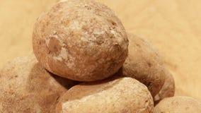Traditionele Spaanse en Canarische schotel van aardappels stock video