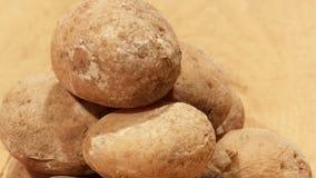 Traditionele Spaanse en Canarische schotel van aardappels stock videobeelden
