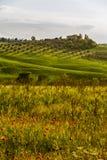 Traditionele Toscaanse mooie meningen Royalty-vrije Stock Afbeeldingen